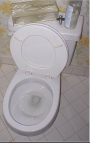 History and Timeline for the Flush Toilet